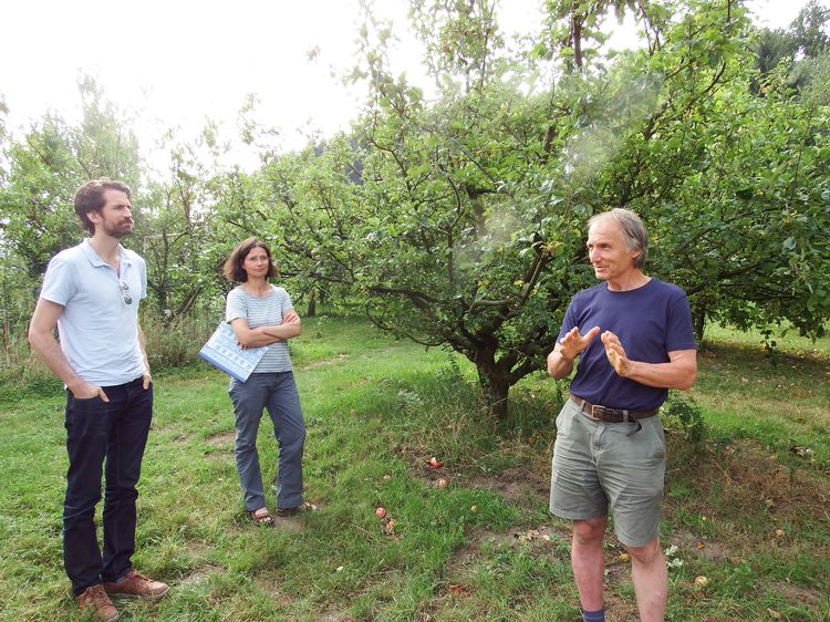 Exkursion to Arboretum Bielefeld in 2019 (group listening to a talk while standing between apple trees)