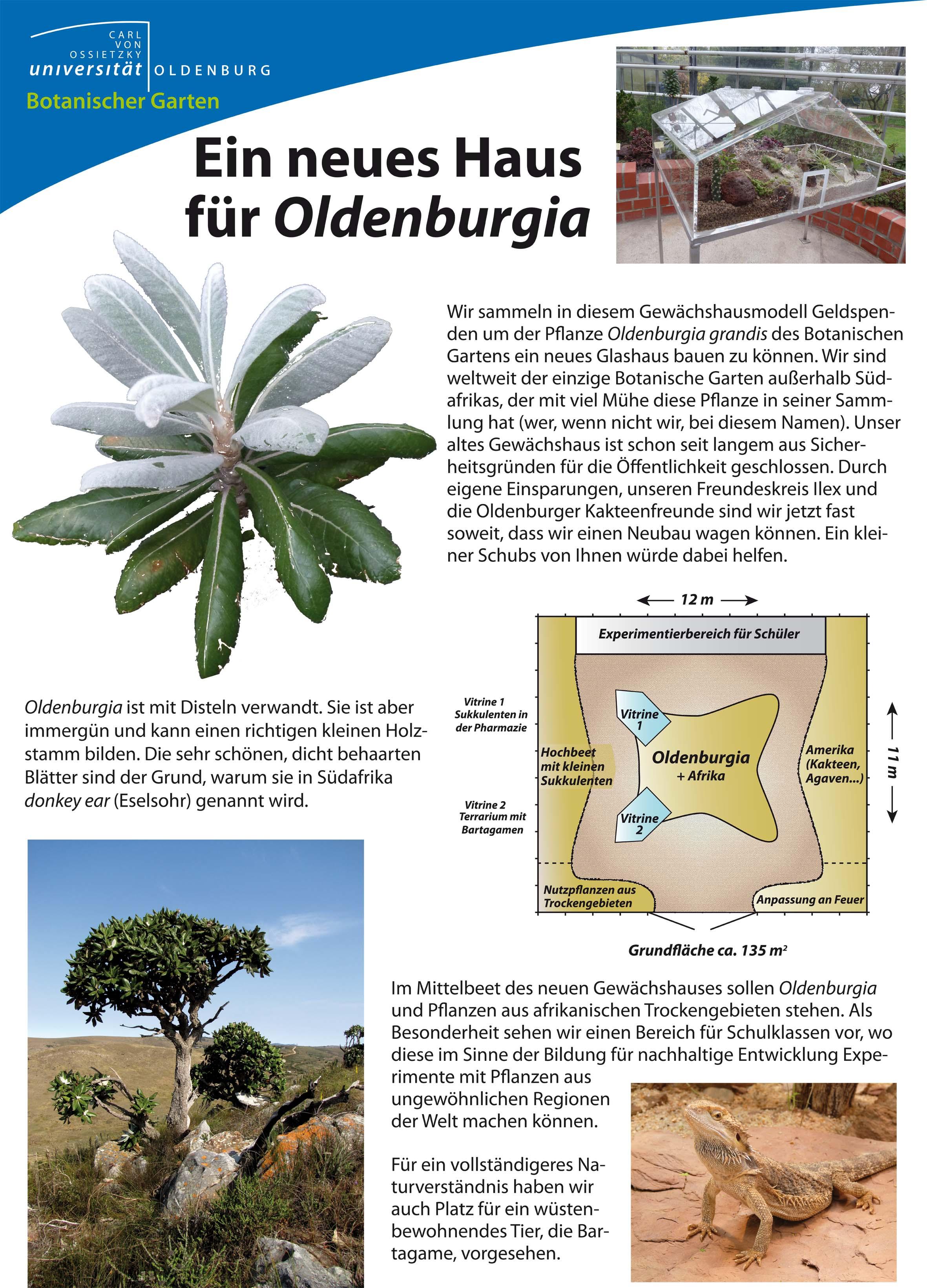 haus suchen oldenburg