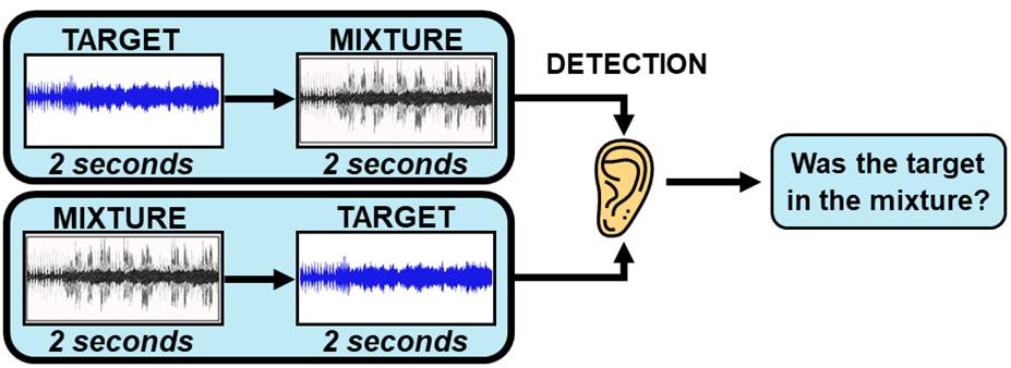 Detection task