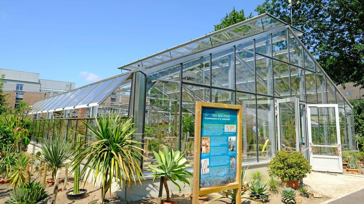 Neues Subtropenhaus Im Botanischen Garten Eroffnet Uni Ol