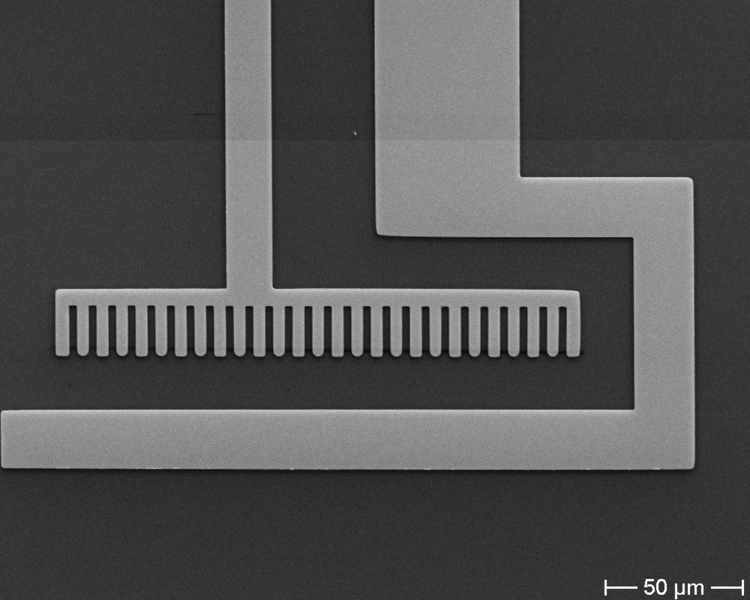 SEM image of bottom chip for liquid cell holder.