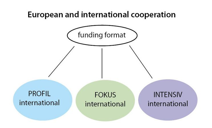 European and international cooperation